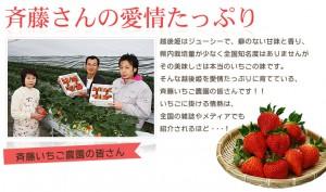 斉藤いちご農園いちごジェラート&シャーベット 10個入