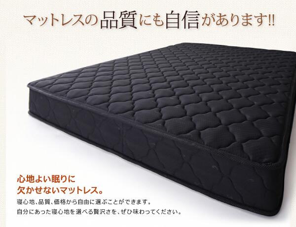 収納ベッド フィータス-M2